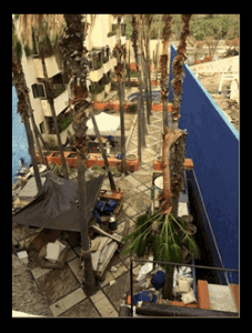 Ten days after the hurricane, we were busy restoring the hotel